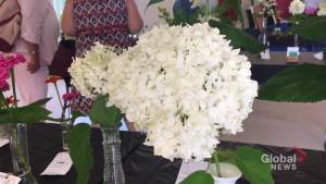 Annual Lakefield Flower Show