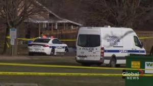 Police on scene in Mississauga after boy, 14, found dead near park