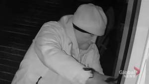 Hamilton police release footage of arson suspect