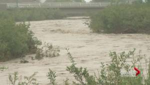 Cardston state of emergency
