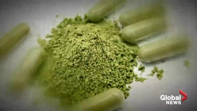 What is kratom? 'Controversial' herbal supplement leads to overdoses in the U.S.