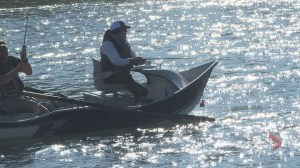 Bow River survey looks for impact of whirling disease