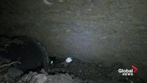 GoPro video shows cat trapped in Edmonton sinkhole