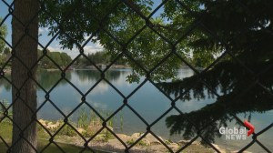 Toddler dies after falling into Calgary lake
