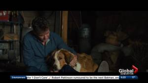 Minute at the Movies: 'A Dog's Journey' and 'The White Crow'