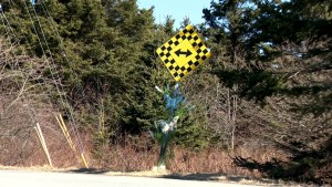 Residents call for increased signage at deadly Cow Bay Road intersection