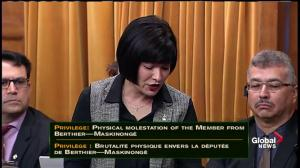 """Liberal MP questions PM over his actions in """"Elbowgate"""""""