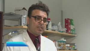 Mechanical engineers at UBC Okanagan working to develop better artificial heart valves