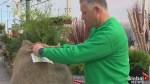 Gardening Tips: spring yard preparation