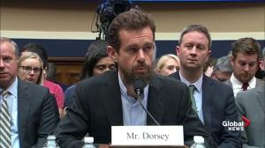 Twitter CEO says platform's verification program 'is in serious need of a reboot'
