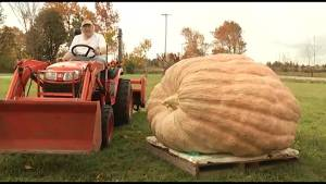 Kawartha Lakes farmer grows record pumpkin