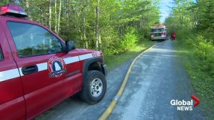 Cause of Cole Harbour forest fire remains unclear