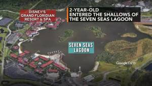 Search continues for 2-year-old boy dragged into water by alligator at Walt Disney World