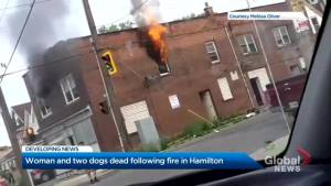 Woman, 2 dogs die in Hamilton fire