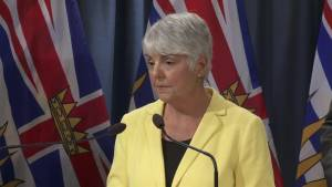 What steps will province take to combat money laundering in B.C.