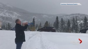 Trumpet player soothes snow-delayed travellers in Alberta