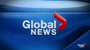 Global News Morning May 3, 2019