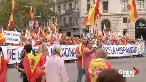 Thousands march in Barcelona marking Spain Day