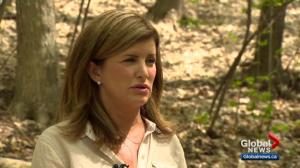 Interim Conservative leader Rona Ambrose weighs in on Alberta's united right