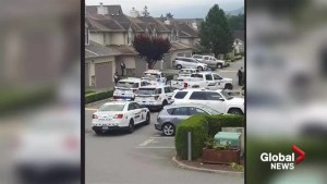 Chilliwack family victimized by swatting speaks out