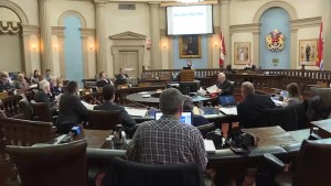 Kingston city councillors react to annual budget blueprint