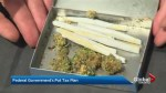 Law Professor weighs in on Ottawa's plan to tax pot