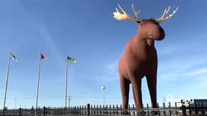 Moose Jaw's mayor reacts to Norway's besting of his town's moose statue