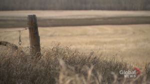 Sask. government finds majority support prior consent in trespass survey