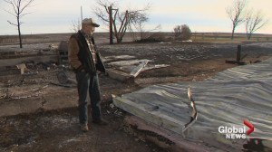 How Alberta's Wheatland County looks the day after a devastating wildfire