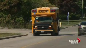 Ontario Ombudsman releases report on investigation into Toronto school bus delays