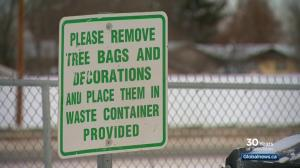 A green Christmas in Saskatoon: reducing waste during the holidays