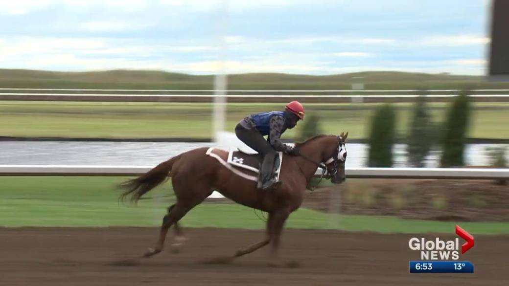 Click to play video 'Canadian Derby set to start new era of horse racing at new racetrack'