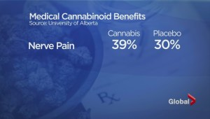 New report questions benefits of medical marijuana