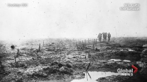 Armistice anniversary:  Surviving the battle