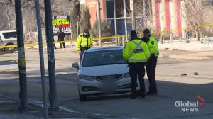 Sections of Osborne Street closed after pedestrian struck by vehicle