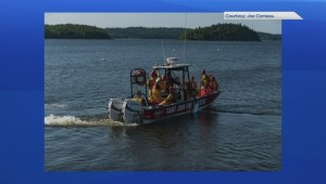 Man, dog rescued after falling several metres on Long Island in Kennebecasis River