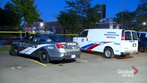 Overnight shooting at a Scarborough basketball court leaves one man injured