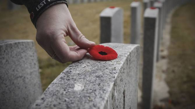Poppy An Enduring Symbol Of Remembrance Day But Are Fewer People