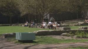 Battle for green space in downtown Montreal