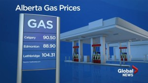 Low gas prices not expected to stick around much longer for Albertans