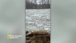 Ice flows cause Red River to swell