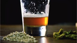 Cannabis is safer for long-term consumption than alcohol: expert