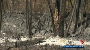 Firefighters preparing for Strathcona County wildfire to flare up Tuesday