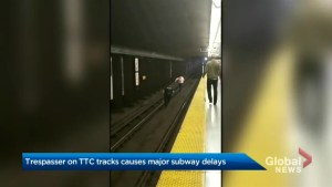 Toronto police investigate video of person running into TTC tunnel
