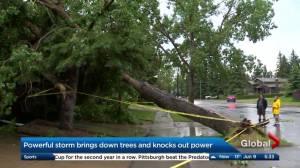 Thunderstorm sweeps across southern Alberta on Thursday