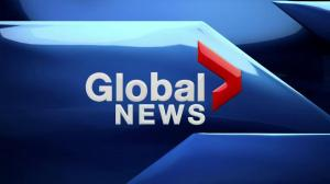 Global News at 6: Jan. 8, 2019