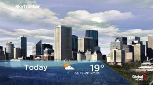 Edmonton early morning weather forecast: Wednesday, June 5, 2019