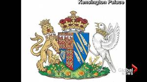 New coat of arms created for Meghan Markle after royal wedding to Prince Harry
