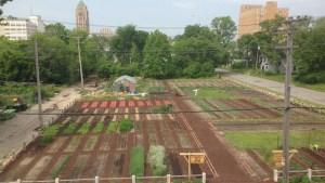 Urban farming in troubled neighbourhoods