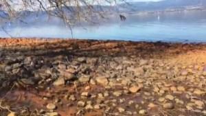 Orange rocks on Kelowna beach